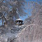 Gazebo after Ice Storm by NoblePhotosCard