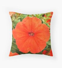 African Sunset  (Petunia Pellets) Throw Pillow