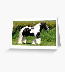 elite horse Greeting Card