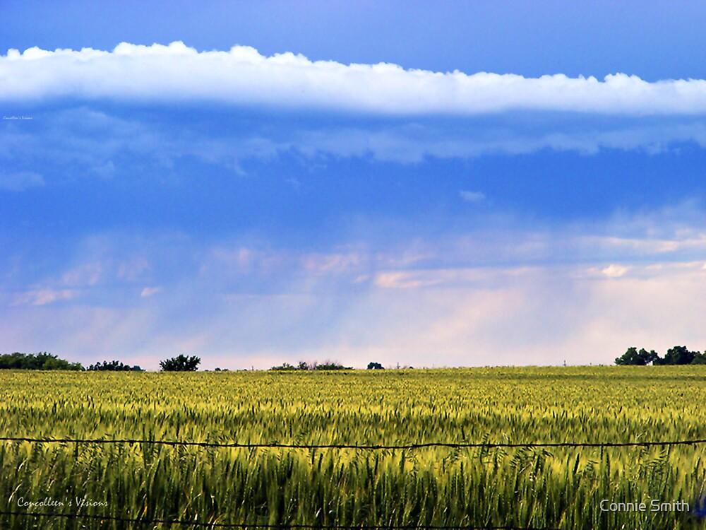 Rain on the Plains by Connie Smith