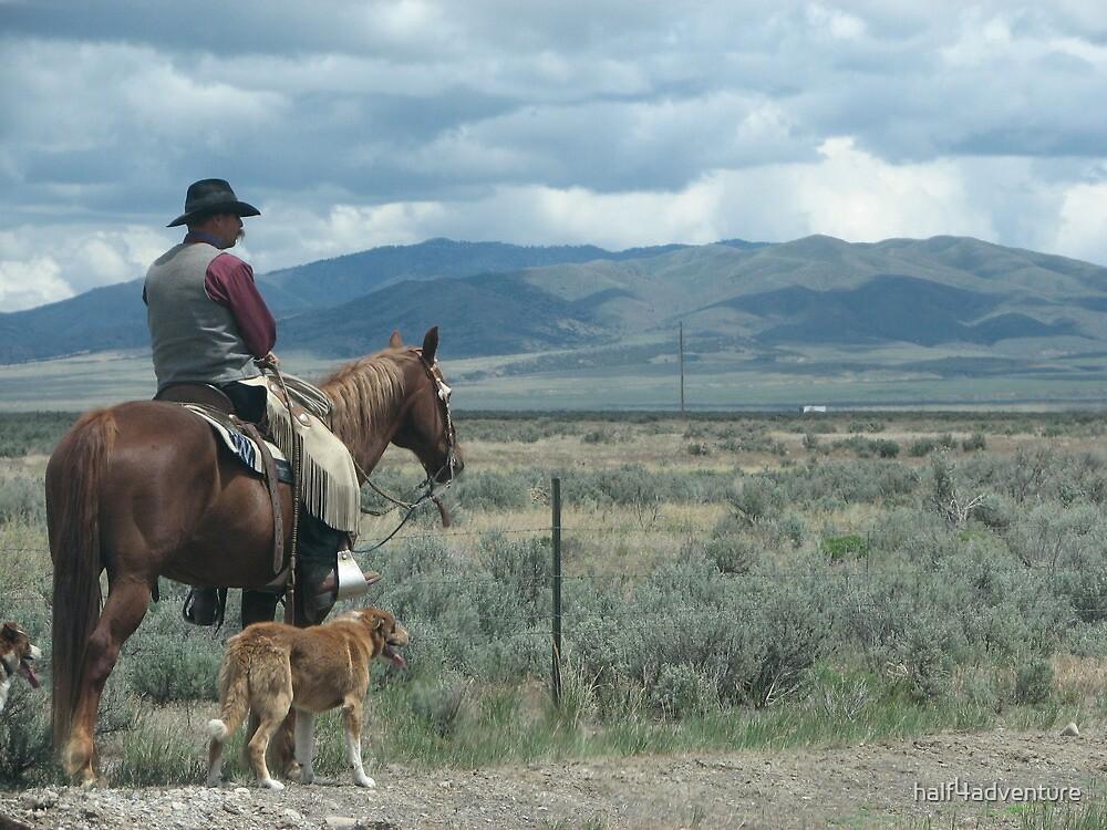 Cowboy Photo by half4adventure