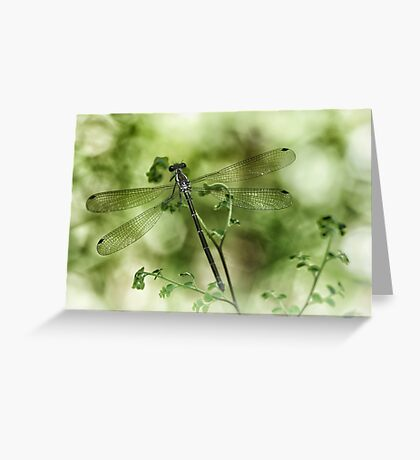 A tiny one hidden in the green by the pond Greeting Card