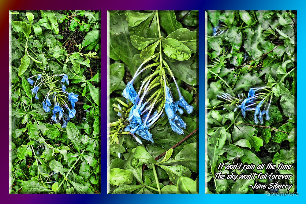 Rain Wet Flowers in Blue by GolemAura