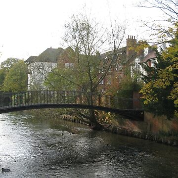 DOWN BY THE RIVER - SALISBURY - WILTSHIRE by kazaroodie