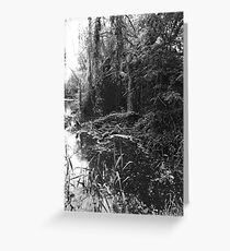 Twisted Willow Greeting Card