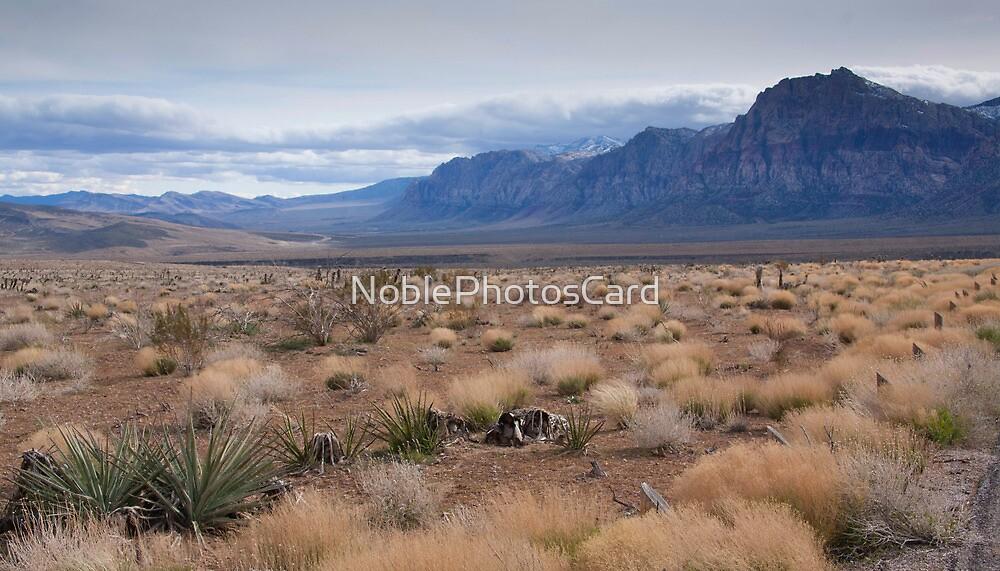 Blue Mountain Landscape in the Desert Southwest by NoblePhotosCard