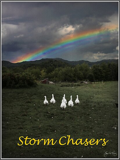 Storm Chasers Poster by Wayne King