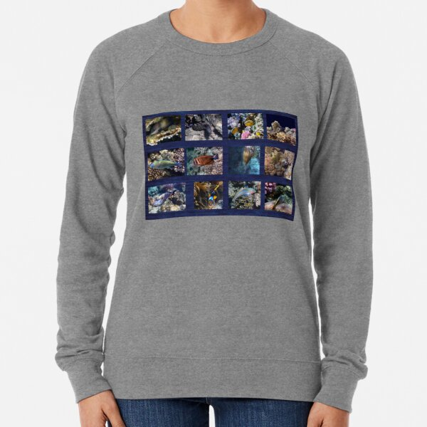 Hurmerinta Red Sea Sealife Collage 3 Lightweight Sweatshirt
