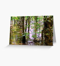 Swamp Waters Greeting Card