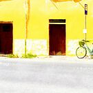 Fognano: view two doors and bicycle by Giuseppe Cocco