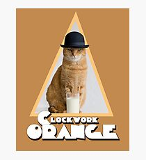 A Clockwork Orange (Cat) Photographic Print