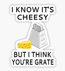 I Know It's Cheesy But I Think You're Grate Sticker