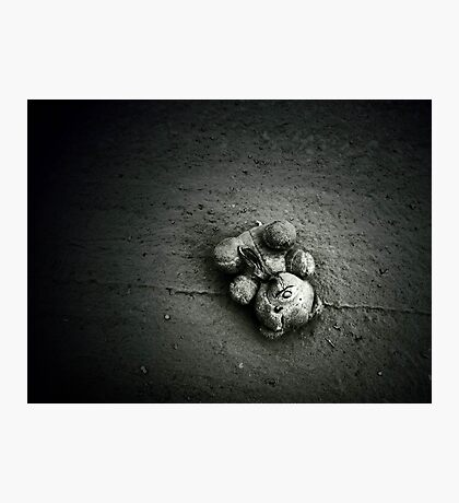 Abandoned Teddy Photographic Print