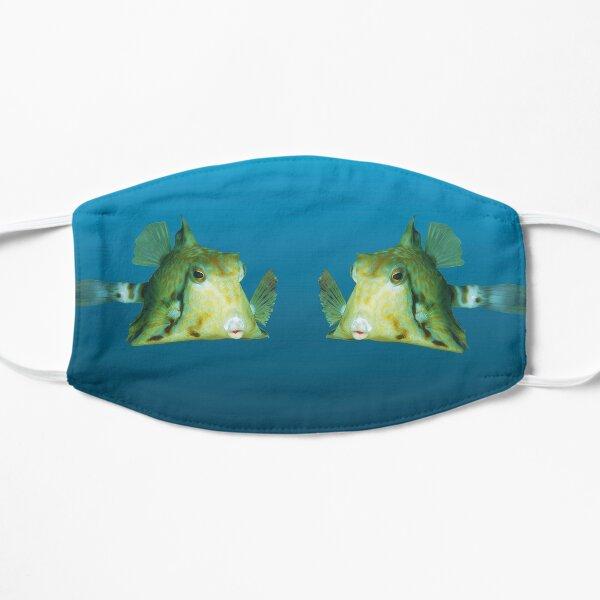 Fischmotiv | Kofferfisch schwebt vor blauem Hintergrund |  Flache Maske