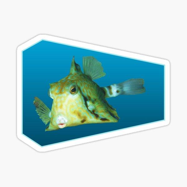 Fischmotiv   Kofferfisch schwebt vor blauem Hintergrund    Sticker