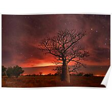Boabs and Bushfires  Poster