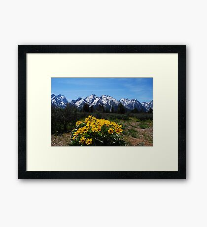 Wildflowers and the Grand Tetons Framed Print