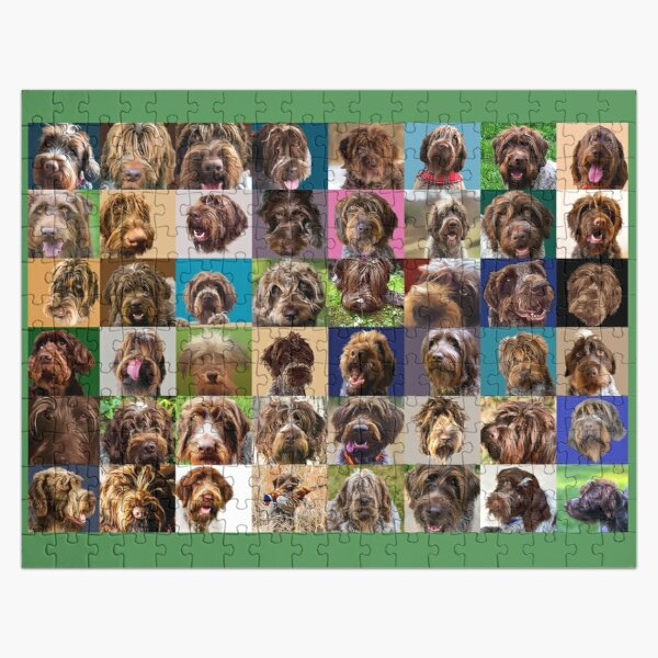 GRIFF PUZZLE Jigsaw Puzzle