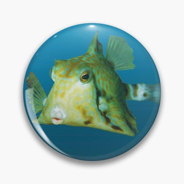 Fischmotiv | Kofferfisch schwebt vor blauem Hintergrund |  Button