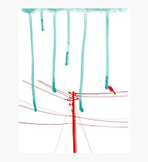 Wire Wire Telephone Photographic Print