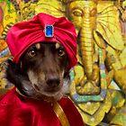 Indian Rajah by Louise Docker