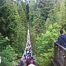 Capilano Suspension Bridge -- Vancouver, BC, Canada by travisferrell