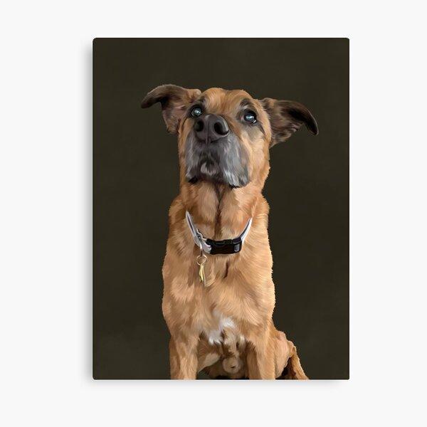 Portrait de Monty Impression sur toile
