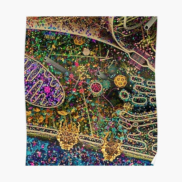 Human Cell Detailed, Biologist/Scientist/Science Lover Poster