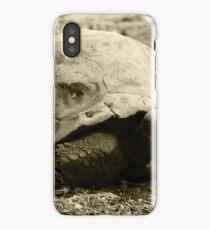 Giant Tortoise iPhone Case/Skin