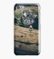 Komodo Dragon  iPhone Case/Skin