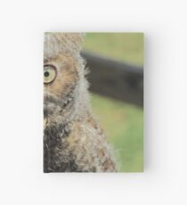 Baby screech owl Hardcover Journal