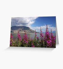 Fireweed at Kluane Lake Greeting Card