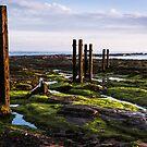 St Mary's Island Posts by John Dunbar