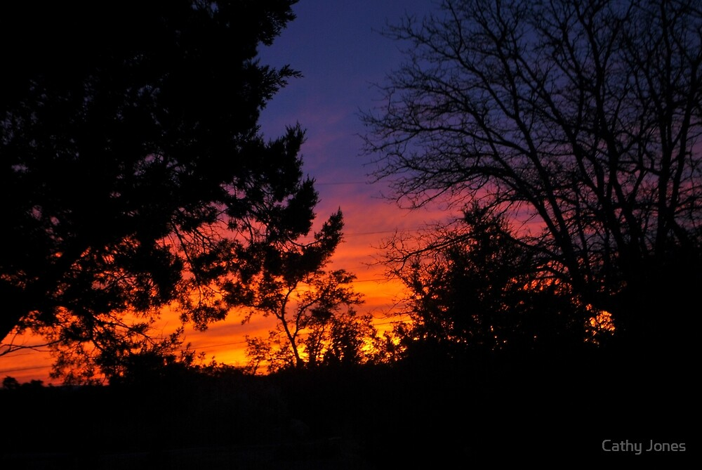 December Sunset by Cathy Jones