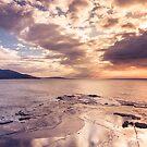 Beachy Themes by xaiya