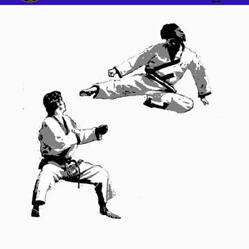 Flying Side Kick by shipsoo