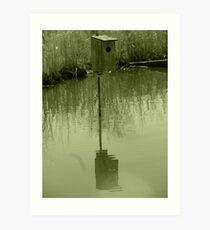 Nesting Box in a Marsh Art Print