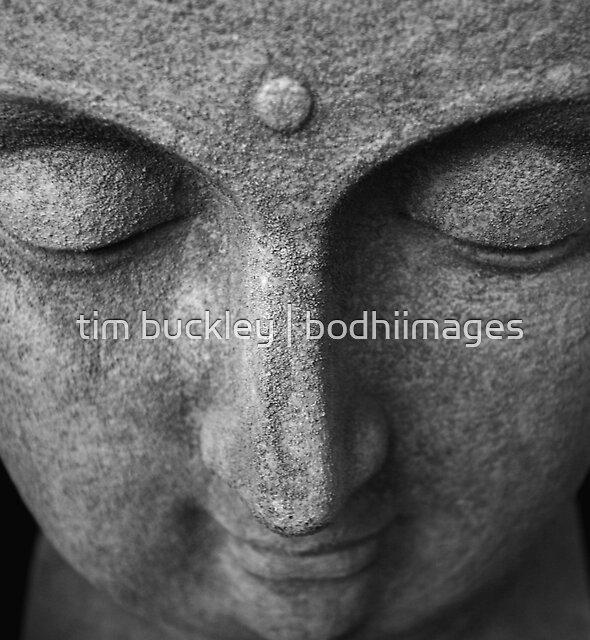 buddha in stone. prahran market, melbourne by tim buckley | bodhiimages