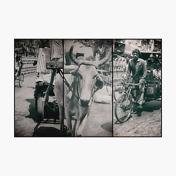 engines of india Photographic Print