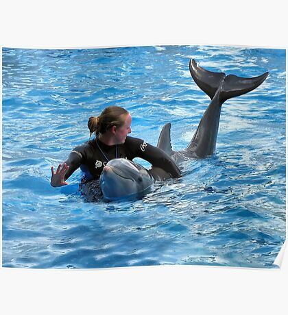 Having Fun With The Dolphin Poster