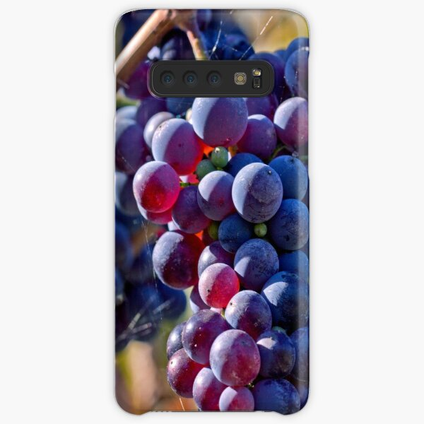 Saw it on the Grape Vine Samsung Galaxy Snap Case