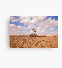 Desert Oasis. Photographed in Israel Canvas Print