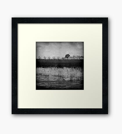 Middle of Winter Framed Print