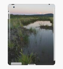 Tranquil Reflections iPad Case/Skin