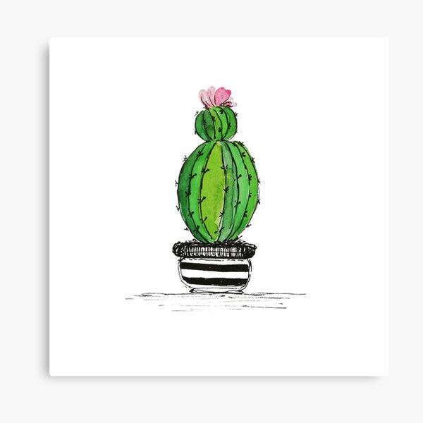 Sweet succulent Canvas Print
