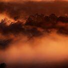Dreamy Dawn by debsphotos