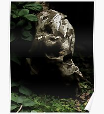 Hiding in the Undergrowth   Poster