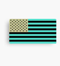 USA flag inverted color Canvas Print