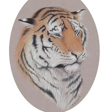 Unimpressed - Blue Eyed Tiger by skieborne