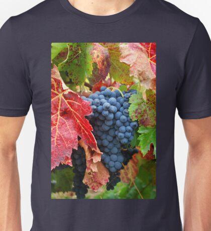 Grape Harvest T-Shirt